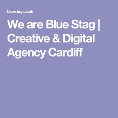We are Blue Stag | Creative & Digital Agency Cardiff