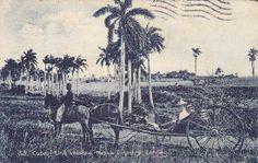 una volanta (Postales - Postales Extranjero - América - Cuba)