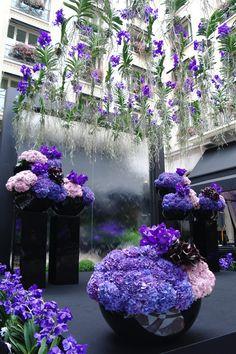 Purple was the color ! Flowers by Jeff Leatham Photo by Studio Cabrelli Jeff Leatham, Deco Floral, Paris Photos, Four Seasons, Event Design, Bali, Bright, Studio, Purple