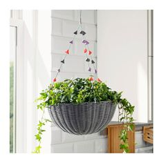 Beautiful hanging planters that will make you want to live in a 'jungalow' | CBC Life