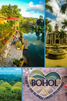"Bohol, Philippines has so much to offer...scenic rivers, Colonial Spanish churches, beautiful beaches, Chocolate Hills and adorable Tarsiers. To make sure you don't miss anything click through to our article and ""Discover The Best of Bohol""   via @livedreamdiscov"