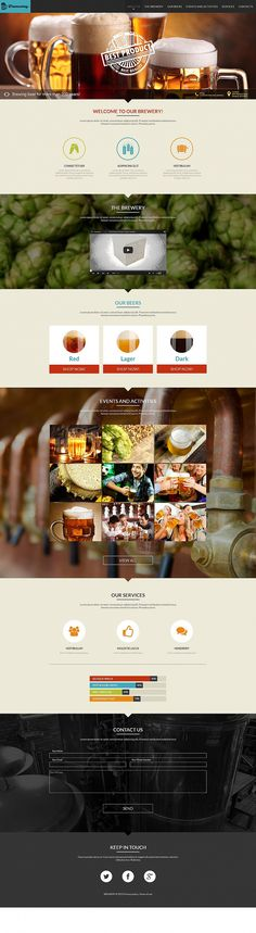 Beer Website Design