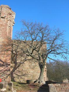 Hohenecken Burg
