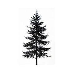 55 Ideas pine tree tattoo ideas tat 55 Ideen Kiefer Tattoo Ideen tat This image ha Pine Tattoo, Raven Tattoo, Evergreen Tree Tattoo, Evergreen Trees, Tree Tattoo Side, Back Tattoo, Kiefer Tattoo, Compass Tattoo, Natur Tattoos
