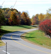 """This website is a travel guide for the Natchez Trace Parkway and the towns and areas near the """"Trace"""". You can find pictures (even a few vid..."""