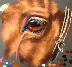 Learn how to tackle tough horse eyes now available on ArtTutor as part of our Pastels Animal Module