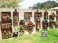 Caixotes no muro com vasinhos de plantas