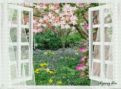window Flowers Gif, Glitter Flowers, Gifs, Verona, Morning Memes, Moving Pictures, Cat Art, Animated Gif, Good Morning