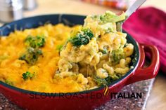 The Best Ever 25 Skillets and Casseroles25 Minute Spicy Mexican Corn Skillet with Sausage is an explosion of Mexican flavors all in one skillet!3 Cheese Skillet Lasagna, in 30 minutes! Packed with traditional flavor, one skillet in half an hour!30 Minute Bacon Lovers Chicken Alfredo with Fettuccine and Broccoli is like something you would order at a fine Italian restaurant.One Skillet Meal: 20 Minute Cheese Lovers Mac and Cheese with Broccoli is the easiest and cheesiest macaroni and cheese…