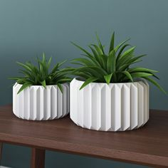 Found it at Wayfair - Junius Fluted 2 Piece Ceramic Pot Planter Set