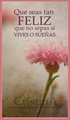 Feliz https://www.facebook.com/pages/Caminando-por-la-vereda-del-Sol/295731910617292