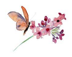 Origineel Aquarel schilderij van een vlinder en door Zendrawing, €25.00