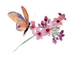 Watercolor painting of a orange red butterfly and flower. Artprint in A4 or 8 x 10 size. Zen painting. Nature painting.