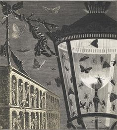 """Max Ernst, """"and the butterflies begin to sing,"""" 1929. (Part of the collage novel """"La femme 100 têtes"""")    1929    Collage"""