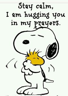 Hugging you, Charlie Brown and Woodstock Images Snoopy, Snoopy Pictures, Peanuts Quotes, Snoopy Quotes, Peanuts Cartoon, Peanuts Snoopy, Snoopy Hug, Peanuts Comics, Bibel Journal