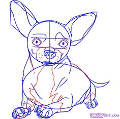 how to draw a chihuahua step 5