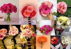 i love gerber daises!