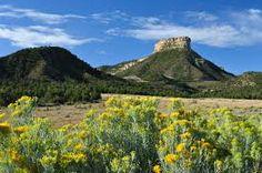 Image result for mesa verde