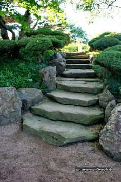 Garden Stairs, Stepping Stones, Backyard, Hair Styles, Outdoor Decor, Photography, Attic, Squares, Inspiration