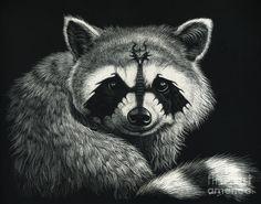 Raccoon Drawing - Draccoon by Stanley Morrison