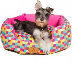 Colorful Pet Bed  #cute #cat #dog #animals #kitten #bed #fashion #style