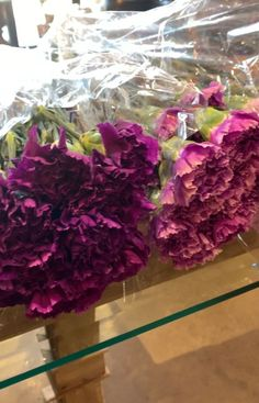 Explore the full range of lavender, violet, purple, & purple-black carnations from the Moon Series by Florigene.  These are the coolest carnations for making any bouquet or arrangement stand out.   They are currently available across the USA & Canada by special request from your nearest floral wholesale market.