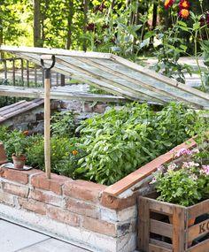 Trendy door frame tips Wooden Greenhouses, Cold Frame, Garden Terrarium, Diy Greenhouse, Vegetable Garden Design, Fruit Garden, Edible Garden, Growing Vegetables, Vegetables Garden