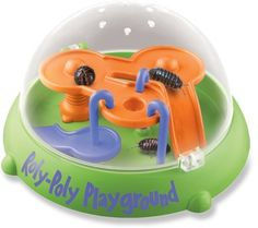 Ant Farm Roly-Poly Playground
