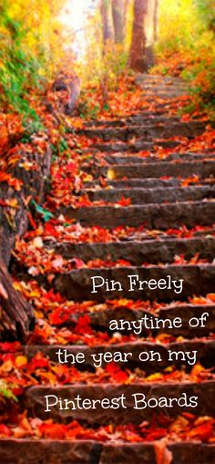 Pin freely anytime of the year ♥ Tam ♥
