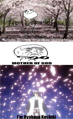 I'm Byakuya Kuchiki! lol