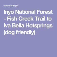Inyo National Forest - Fish Creek Trail to Iva Bell Hot springs (dog friendly)