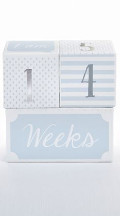 Nursery Decor Baby Picture Props for Photo Sharing The First Year Baby Aspen My First Milestone Prince Age Blocks