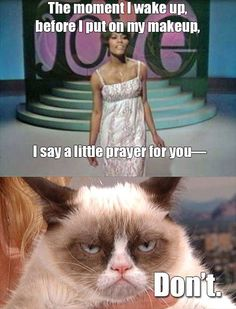 "Grumpy Cat sings ""Say a little prayer for you"" Grumpy Cat Quotes, Grumpy Cat Humor, Cat Memes, Grumpy Kitty, Little Prayer, Prayer For You, Tiny Cats, Angry Cat, Cat People"