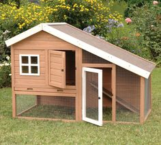 Cape Cod Chicken Coop with Chicken Run, Nesting Box and Roosting Bar