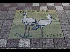 A filmet a japán Toyooka-ban készítették november First Girl, Stork, Girls Dream, Madness, November, Kids Rugs, Japan, Pets, Youtube