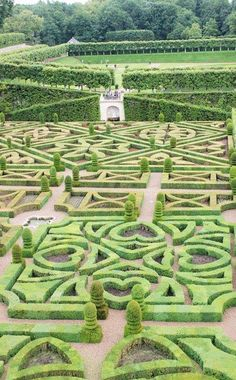 Lovely Heart Maze Garden - reminds me of Alice in Wonderland