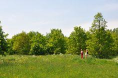 De integrale beplantingsmethode  toegepast op een park, 2 jaar na aanplant | ontworpen door GRASVELD Tuin- en Landschapsarchitecten Park, Design, Parks