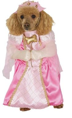 Rubies Costume Halloween Classics Collection Pet Costume, Pretty Princess, Large