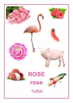 Référentiel d'Elisa Swaney rose