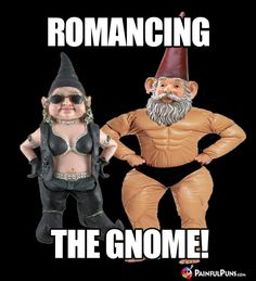 7c6e129754bc4f1689e26f1cc3a5be78 the gnome funny gnomes diet meme gnome problem is too big, so he joined weight watchers