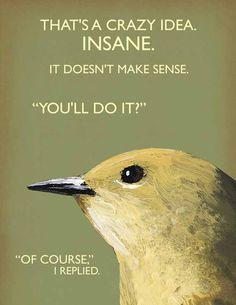 The Mincing Mockingbird & The Frantic Meerkat — Crazy Idea note card