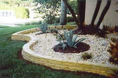 raised tropical flower bed