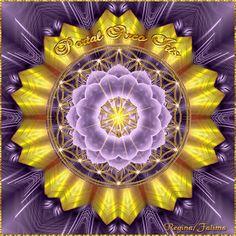 Cantinho de Imagens da Guerreira: Mandala Amarela