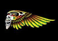 HELLS ANGELS and the skull logo