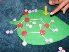 Photosynthesis activity for Botony lesson