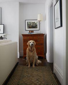 Alex Reid's Top-Floor Hideaway in a Greenwich Village Townhouse | Architectural Digest
