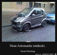 "Germany's new ""Smart-Mustang"" Car Memes, Car Humor, Funny Memes, Foto Fails, Vw Motorsport, Funny Today, Ad Car, Smart Car, Cars"