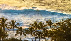 OAHU HAWAII GALLERY