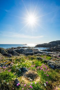 "WhichCitytoTravel on Twitter: ""Bremnes, Hordaland, #Norway #Travelinspiration…"
