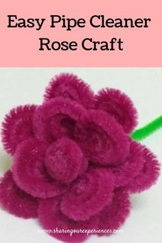 How to make rose with Pipe cleaner| Easy Pipecleaner rose craft | Sharing Our Experiences